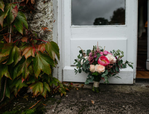 L + A ~ Rathsallagh Country House ~ Wicklow Wedding Photographer